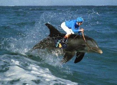 An extreme sport?